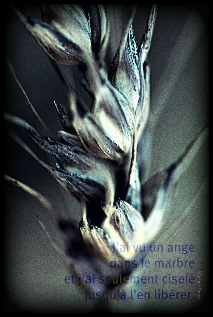 L'ange et la céréale