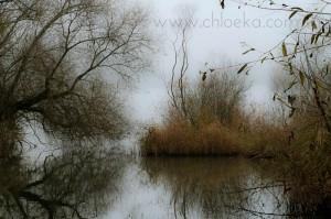 chloeka - brume et ombres du matin-1-2