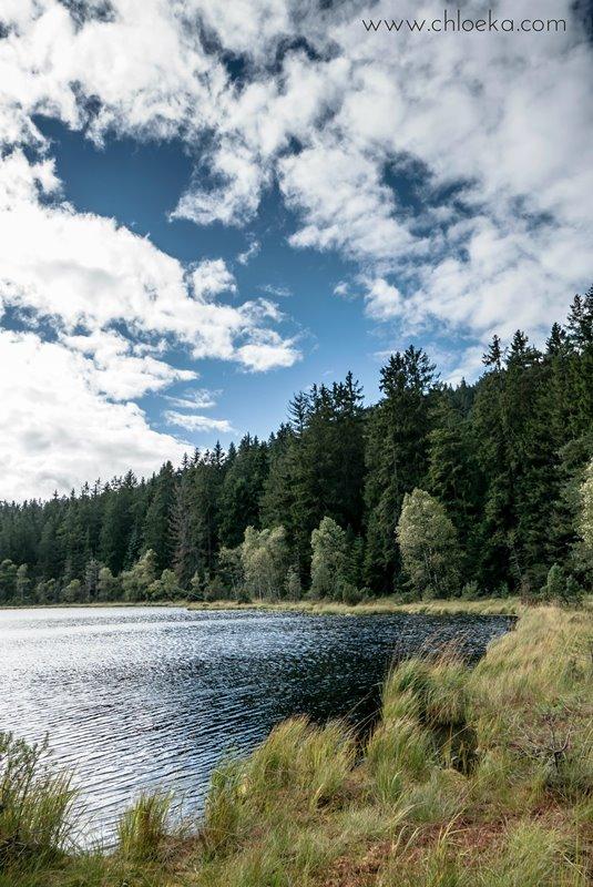 chloeka-badener-hohe-foret-noire-octobre-2016-16