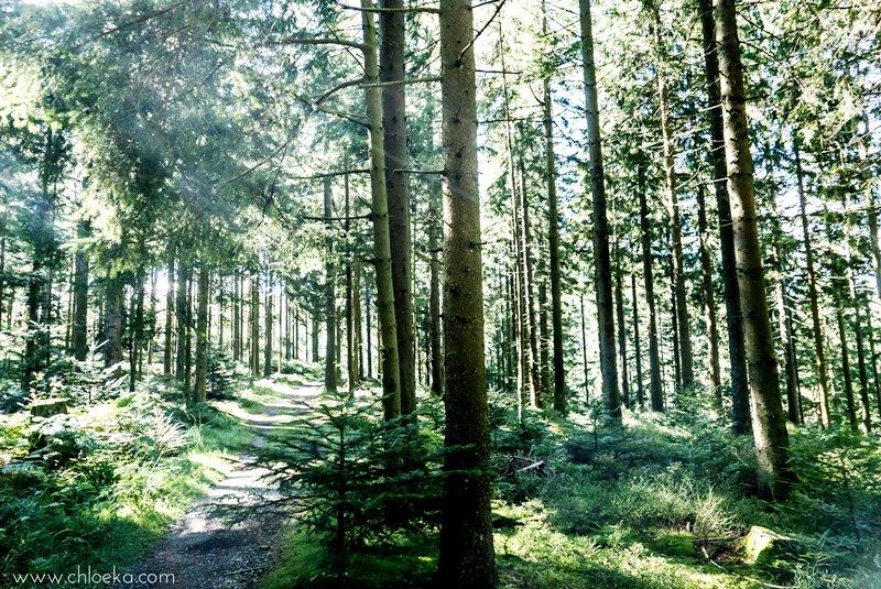 chloeka-badener-hohe-foret-noire-octobre-2016-46