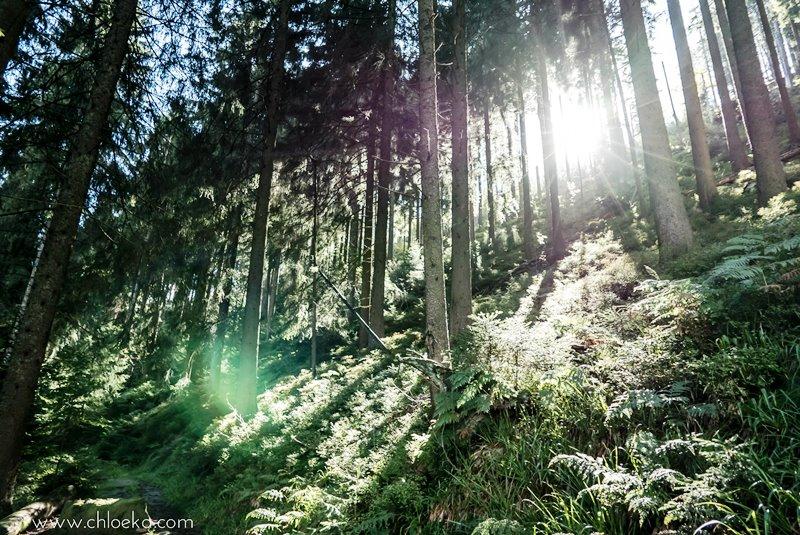 chloeka-badener-hohe-foret-noire-octobre-2016-56