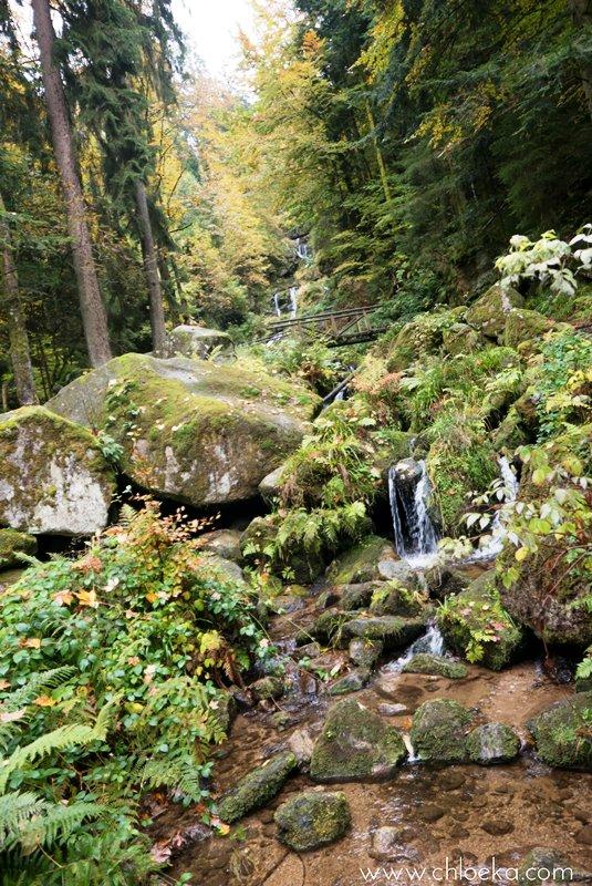 chloeka-herta-hutte-foret-noire-octobre-2016-4
