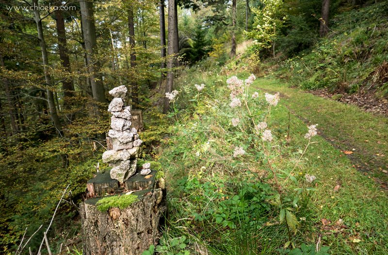 chloeka-hertahutte-buhlertal-octobre-2016-5