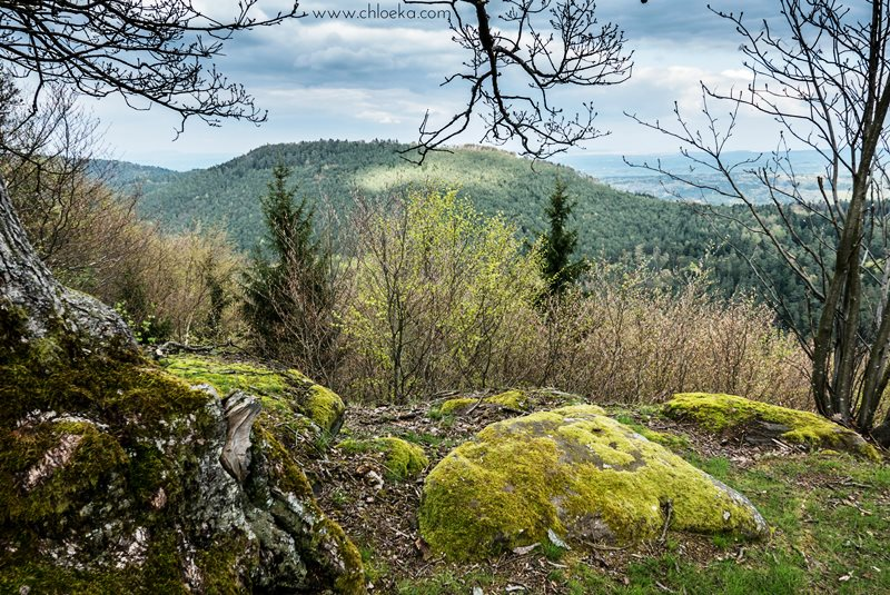 chloeka- La Hoube Geisfels chateau d'Ochsenstein- avril 2016-50