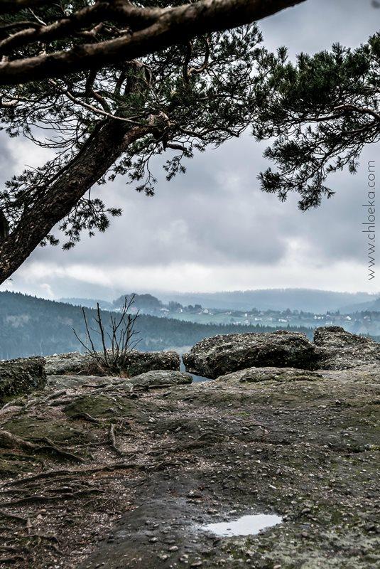 chloeka- La Hoube Geisfels chateau d'Ochsenstein- avril 2016