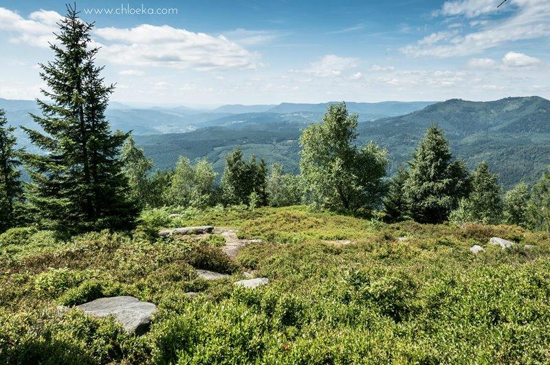 chloeka- Lutzelhouse Rocher de Mutzig- juillet 2016-6