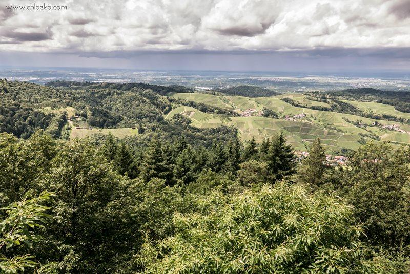 chloeka- Randonnée à Kappelrodeck en Forêt Noire- juin 2016-16