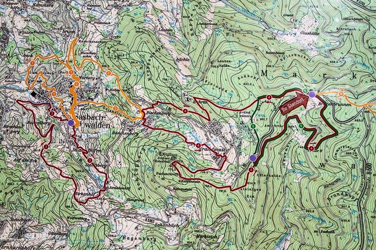 chloeka- Randonnée à Sasbachwalden en Forêt Noire- octobre 2015-67