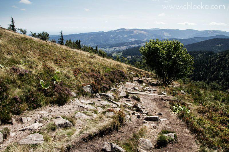 chloeka- Randonnée Gazon de Faing - Aout 2015 -_-19