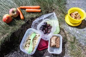 Déjeuner de randonneuse végane, amandes & noix germées - cake à la farine de châtaigne aux courgettes et son cœur de pistou d'estragon - salade courgettes crues soja germé et sa sauce à l'échalote & à la coco - carottes à croquer - dattes fraîches - pommes.