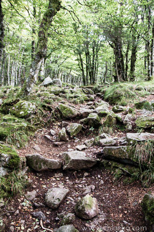chloeka- Randonnée Gazon de Faing - Aout 2015