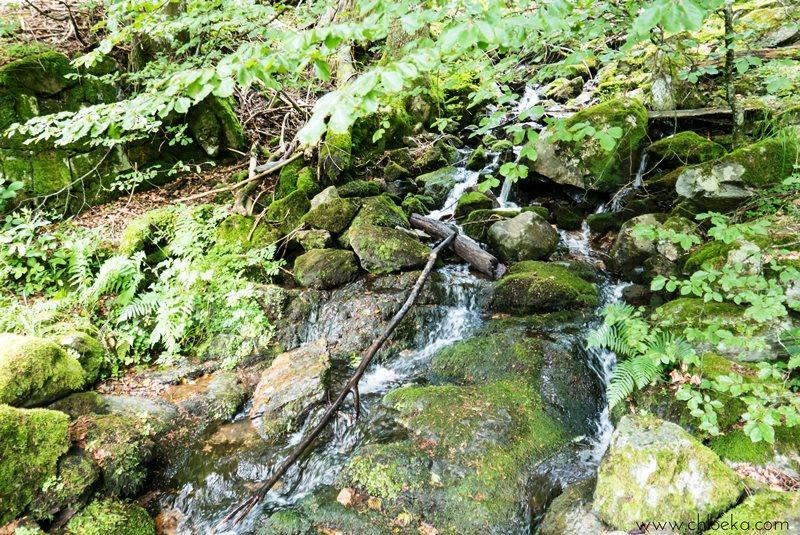 chloeka- Randonnée Todtnau Wasserfall- 16 juillet 2016-32