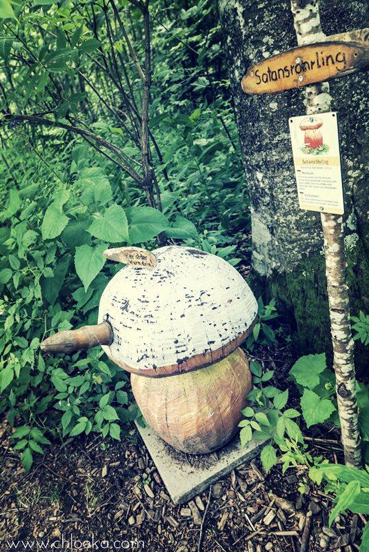 chloeka- Randonnée Todtnau Wasserfall- 16 juillet 2016-60