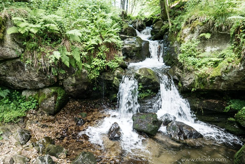 chloeka- Randonnée Todtnau Wasserfall- 16 juillet 2016-73