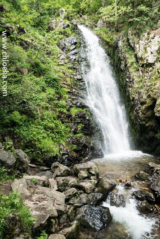 chloeka- Randonnée Todtnau Wasserfall- 16 juillet 2016-75