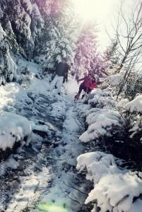 chloeka- Randonnée en Forêt Noire autour de Sand- fév 2016-25