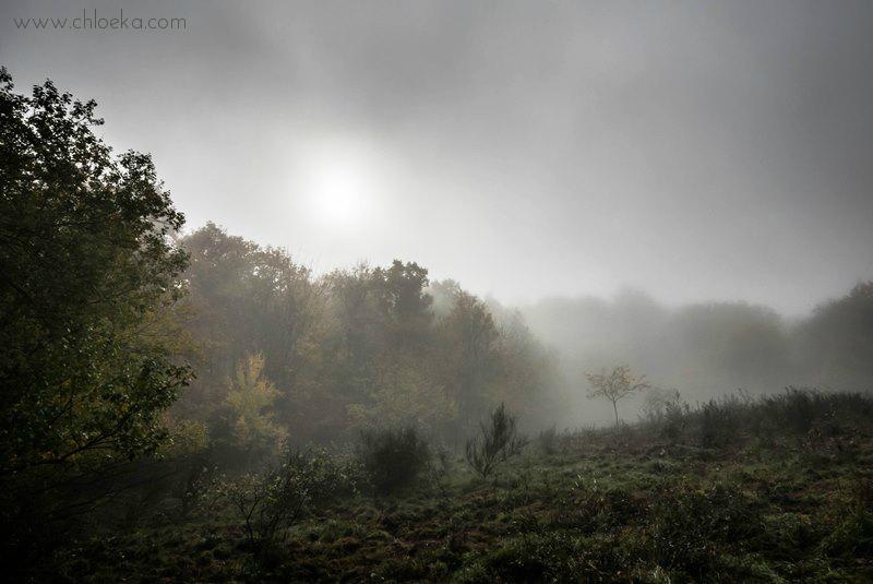 chloeka- Soleil dans la brume Guirbaden nov 2015