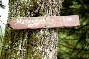 chloeka - balade Mummelsee sept 2015_-3