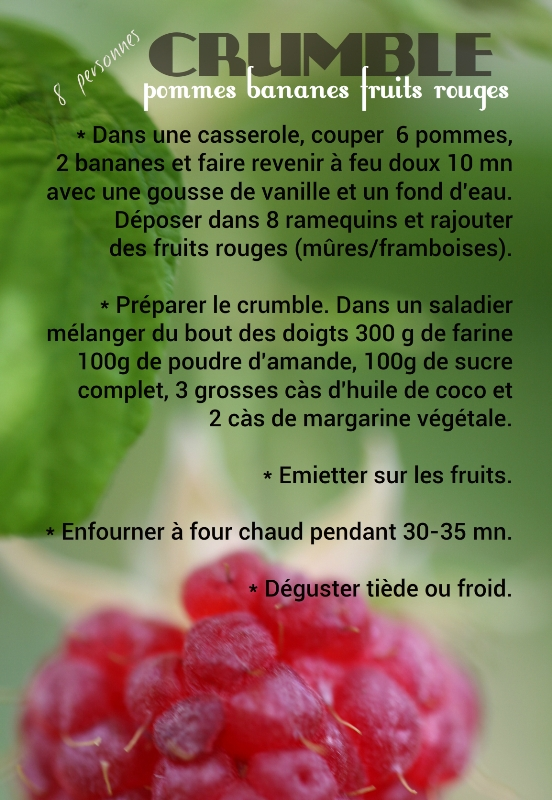chloeka- crumble bananes pommes fruits rouges