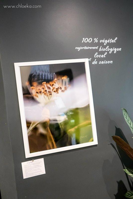 chloeka-exposition-simplicis-herbae-a-velicious-nov-2016-7