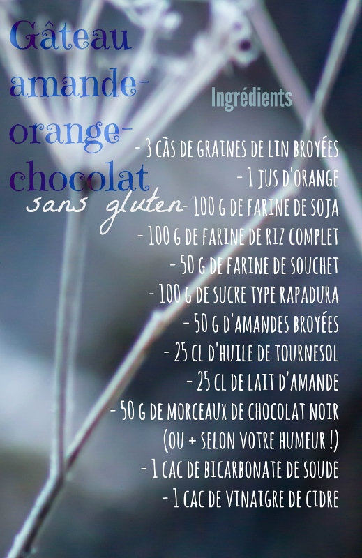 chloeka -gâteau amande choco orange