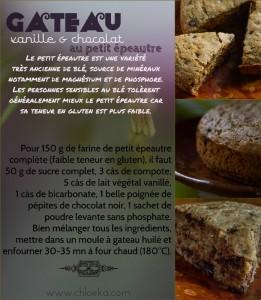 Gâteau (ultra facile) vanille chocolat à la farine de petit épeautre