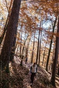 chloeka- grendelbruch rousseurs 1er nov 2015