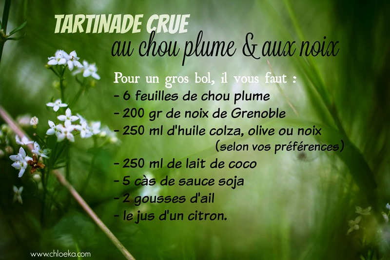 chloeka-ingredients-tartinade-crue-chou-plume-et-noix-oct-2016
