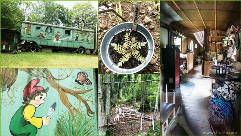 Le jardin pour enfants des bois.