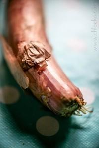chloeka-polenta aux épinards oct 2014-2