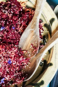 chloeka- ragoût d'hiver aux topimambours de chez moi chou et azukis-15