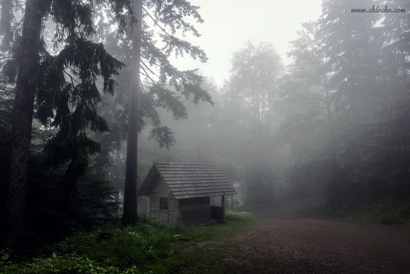 chloeka- rando au Brandenkopf-juin 2016-38