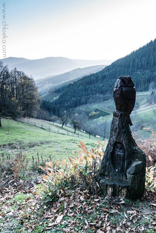 chloeka- randonnée Bad Peterstal en Foret Noire nov 2015_-10