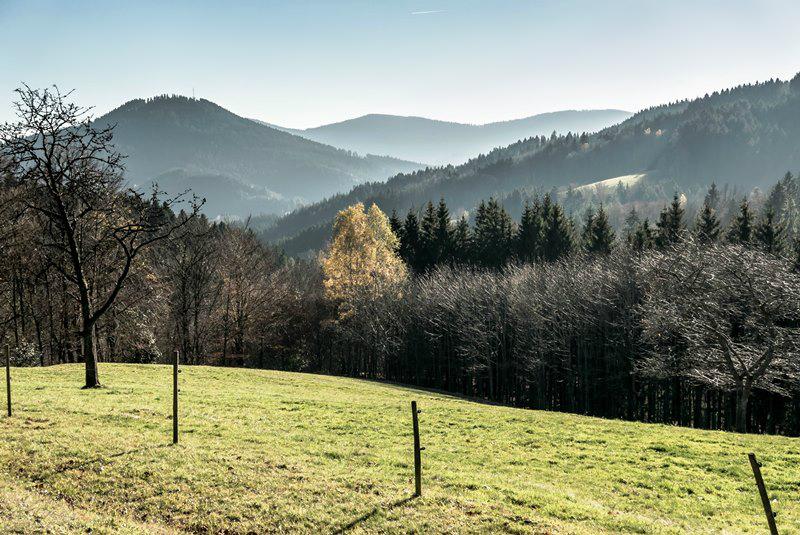 chloeka- randonnée Bad Peterstal en Foret Noire nov 2015_-25
