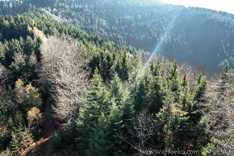 chloeka- randonnée Bad Peterstal en Foret Noire nov 2015_-40