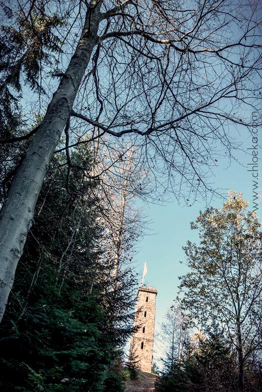 chloeka- randonnée Bad Peterstal en Foret Noire nov 2015_-43