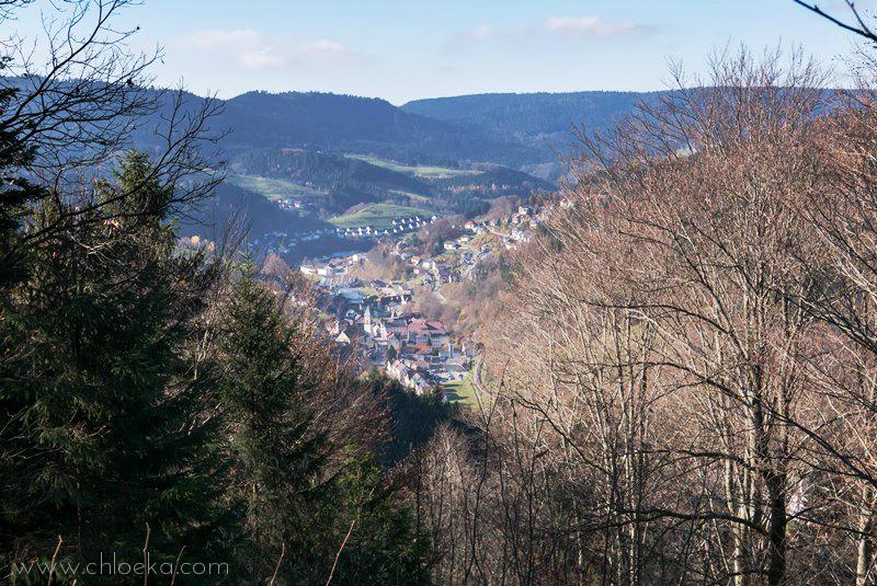chloeka- randonnée Bad Peterstal en Foret Noire nov 2015_-56