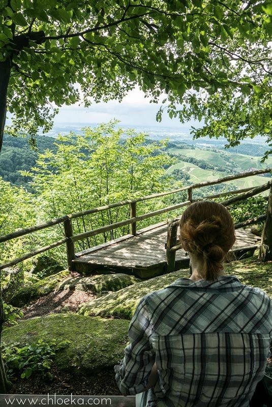 chloeka- randonnée Foret Noire Kappelrodeck- juin 2016-2