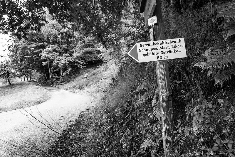 chloeka- randonnée Foret Noire Kappelrodeck- juin 2016-36