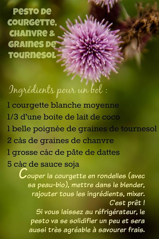 chloeka-recette pesto de courgette- juillet 2015
