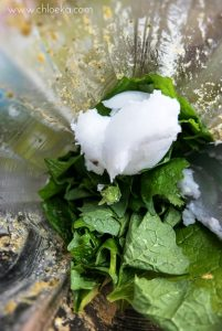 chloeka- tartinade alliaire chanvre coco -mai 2016-4