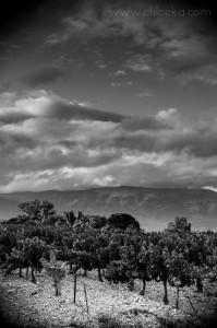 Là-bas, le Ventoux et sa complainte de nuages.