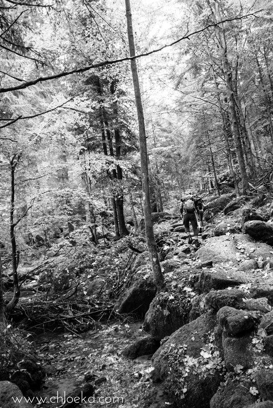 chloeka-wiedenbach-wasserfalle-octobre-2016-11